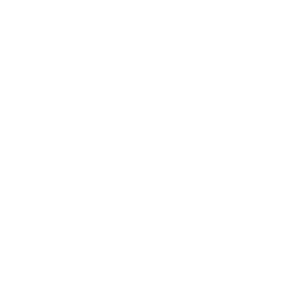 residential cctv monitoring icon